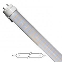 Λάμπα LED Τύπου Φθορίου T8 Αλουμινίου Τροφοδοσίας Δύο Άκρων 90cm 15W 230V 1300lm 180° με Καθαρό Κάλυμμα Θερμό Λευκό 3000k GloboStar 36257